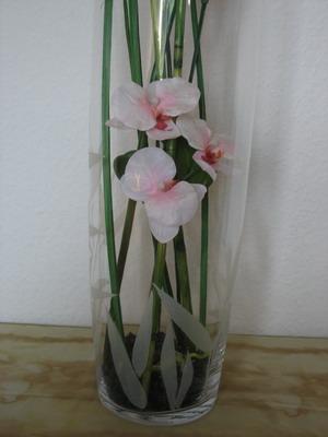 bodenvase orchidee. Black Bedroom Furniture Sets. Home Design Ideas